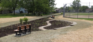 Public School Demonstration Rain Garden