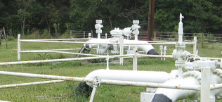 Marcellus Shale Pipeline Corridor Environmental Services
