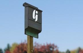Bat Box Installation: An Effective Mitigation Strategy