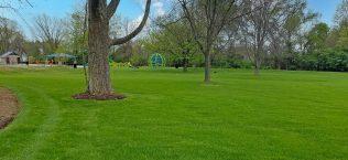 Stephens Park Improvements